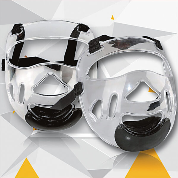 removable head gear face mask
